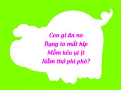 doc-thu-cung-con-choi-va-hoc-qua-nhung-cau-do-vui-thong-minh-11