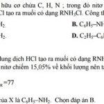 Cách giải các bài toán về Amin – Aminoaxit